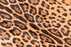 Faux leopard fur - stock photo