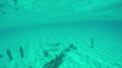 Woman swimming deep underwater and exploring sunken statues Stock Footage