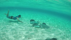 SLOW MOTION: Young man snorkeling underwater with stingrays and sharks - stock footage