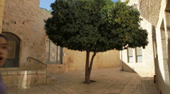 Tree and Girls in Tiny Old Plaza Stock Footage