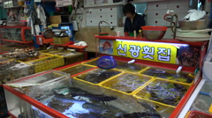 Selling live fish at a seafood market in Busan, South Korea Stock Footage