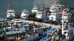 South Korean fishing boats in the harbor of Busan Stock Footage