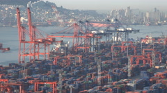 Cranes and containers, cargo vessels being loaded, Busan port, South Korea - stock footage