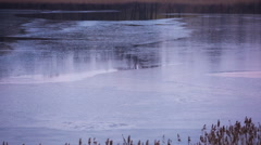 Close up of lake surface Stock Footage