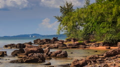Rocks in Shallow Water near Beach with Tropical Plants Stock Footage