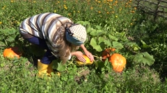 Woman in own eco garden with fresh pumpkin harvest at summer. 4K Stock Footage