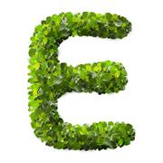Letter E made of green leaves - stock photo