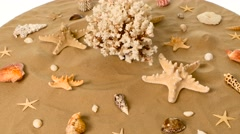 Sea shells over a sand, white, rotation Stock Footage