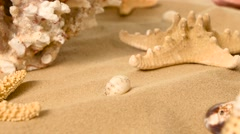 Starfish on a sand beach, coral, rotation, closeup Stock Footage