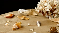 Yellow-white coral spiral and shells on sand, black, rotation Stock Footage