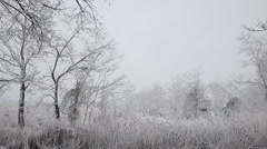 Heavy snow on the river. Winter weather  frozen landscape nature Stock Footage