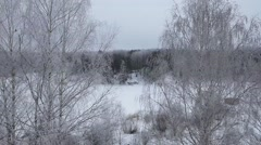 Winter landscape, white snow-covered field and forest Stock Footage