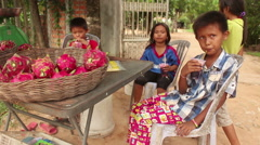Group of youngsters selling dragonfruit in rural southeast Asia Stock Footage