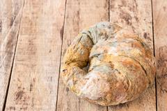 Growing rapidly on moldy bread - stock photo