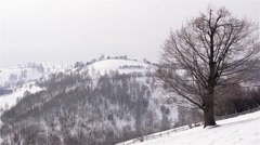 Winter landscape with hills covered by forests and lots of snow Stock Footage