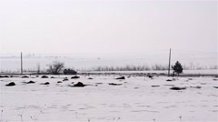 Car goes on a road bordered by farm fields covered with snow - stock footage