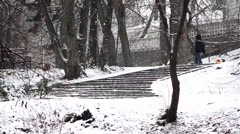 People and dogs walking in the alleys of a park covered with snow - stock footage