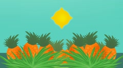 Ananas - Vector Animation - Photosynthesis Stock Footage