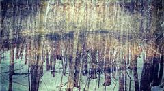 Stock Illustration of winter woods impressionism