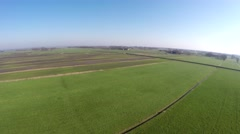 Aerial drone UAV flying slowly over polder landscape grassland steady flight 4k Stock Footage