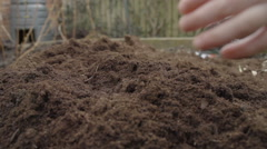 A Little Boy Holds Up Some Fresh Compost In A Veggie Patch - stock footage