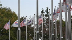 South Korean and United States flag at war memorial DMZ Stock Footage