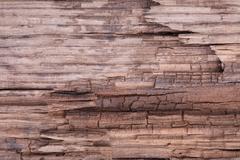 Crack old rooen wood texture Stock Photos