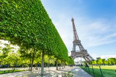 Summer in Paris and the Eiffel tower - stock photo