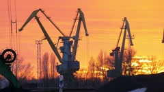 Cranes working at the port Stock Footage