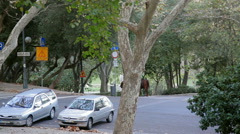 2 police officers on horseback patrol park in Lisbon, Portugal Stock Footage