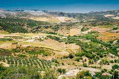 Summer Andalusian Lanscape Near Ronda, Province Of Malaga, Spain Stock Photos