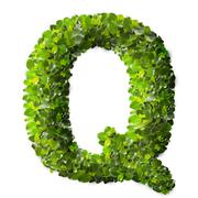 Letter Q made of green leaves - stock photo