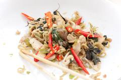 Chinese noodles fried with spicy chicken - stock photo