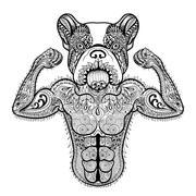 Zentangle stylized strong French Bulldog like bodybuilder. Hand - stock illustration