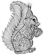 Hand drawn funny squirrel with nut  for adult anti stress Colori Stock Illustration