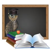 Wise Owl - stock illustration