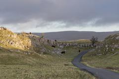 Yorkshire Dales - stock photo