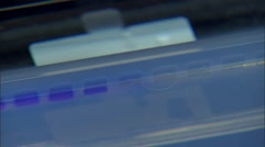 Laboratory Technician Applying Virus Sample to Test Strip - stock footage