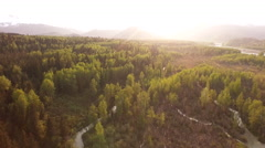 Braided Channel Riverbed and Cottonwoods Aerial Tilt to Scenic Glow Stock Footage