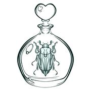 Hand drawn engraving Sketch of May bug. Beetle in the glass bott - stock illustration