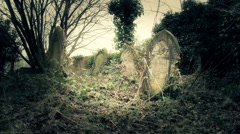 Old forgotten graveyard covered in moss, ivy and weeds - stock footage