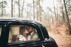 Romantic fairytale wedding couple kissing and embracing in pine forest near Stock Photos