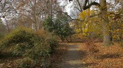 Beautiful view of an alley between trees in a park, Zagreb Stock Footage