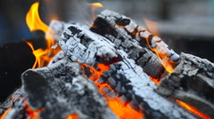 Burning Wood In The Fireplace - stock footage
