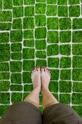 Female feet on the grass. - stock photo