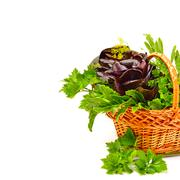 Heap of fresh curly lettuce, water-cress, spinach with parsley in basket. Stock Photos