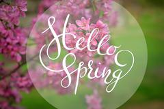 Blossoming apple-tree on background of green grass with letters Hello sprint Stock Photos