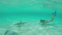 SLOW MOTION: Young woman swimming underwater with stingrays and sharks Stock Footage