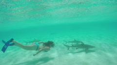 SLOW MOTION: Young woman swimming underwater and snorkeling with sharks - stock footage