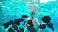 SLOW MOTION UNDERWATER: Man snorkeling and feeding exotic reef fish Stock Footage